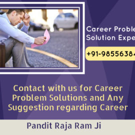 Best Career Problem Solution Expert Guru Ji in Pune Goa
