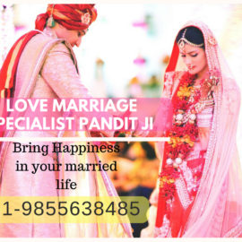 Best Love Marriage Specialist Pandit Ji in Chandigarh Delhi