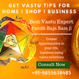 Best Vastu Expert Pandit Ji in Hyderabad Goa