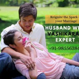 Famous Husband Wife Vashikaran Expert in Goa Chandigarh