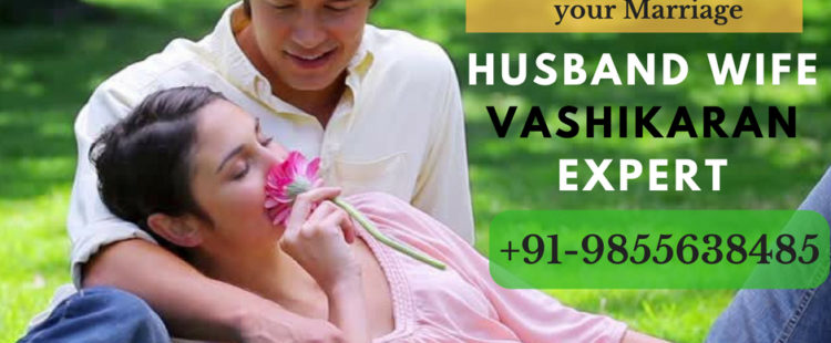 Famous Husband Wife Vashikaran Expert in Goa