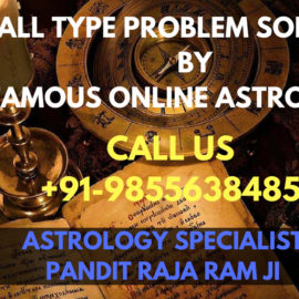 World Famous Online Astrologer in Goa India
