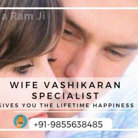 Famous Wife Vashikaran Specialist in Goa Kolkata